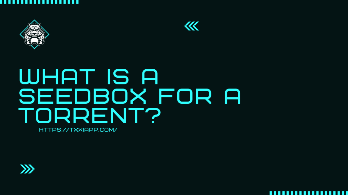 What is a Seedbox for a torrent?